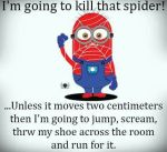 killthe spider