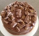 Caramello Koala Cake